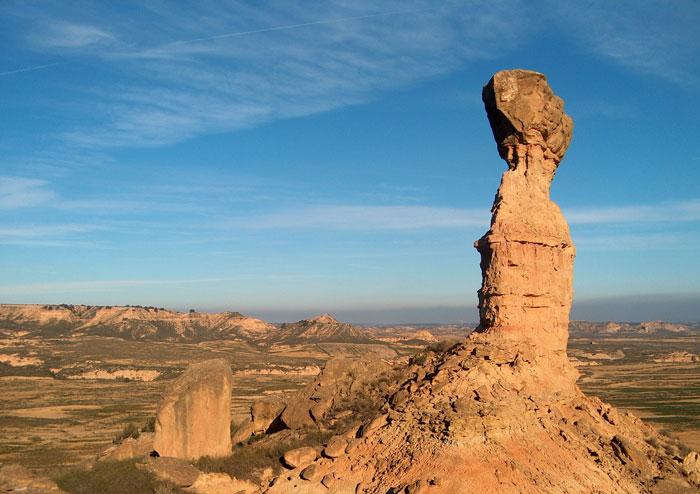 La observación de aves, la gran excusa para visitar Los Monegros